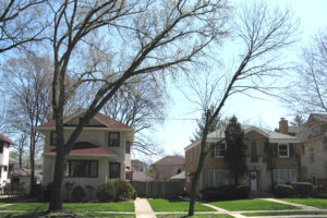Conduct all aspects of urban forestry management to achieve desired project outcomes.